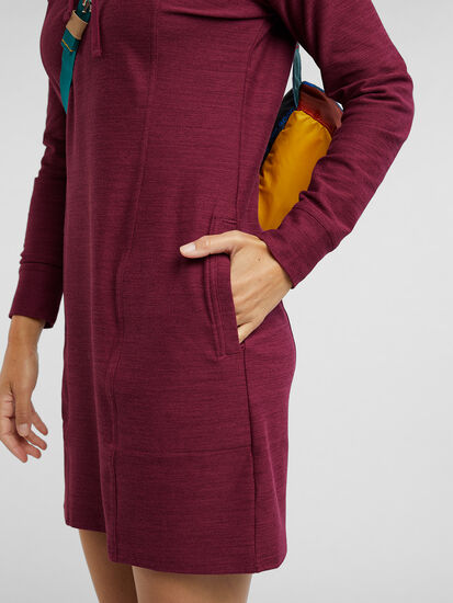 Hibernation Hoodie Sweatshirt Dress, , original